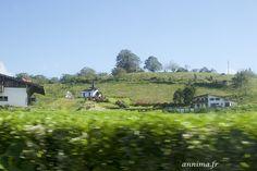 Road-trip au Costa Rica: le magnifique tour de la laguna de Arenal. - annima.fr