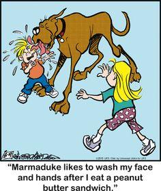 Marmaduke Comic Strip, August 19, 2015     on GoComics.com