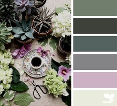 Foraged Hues via @designseeds                                                                                                                                                                                 More