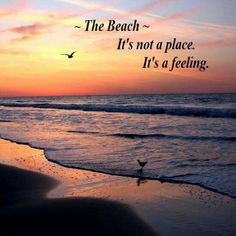 ~The Beach~ It's not a place.  It's a feeling.