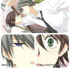 Anime : Junjou Romantica