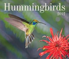 Hummingbirds 2012 (Wall Calendar) by Firefly Books. Save 88 Off!. $1.61. Publisher: Firefly Books; Wal edition (May 19, 2011). Series - Wall Calendar. Publication: May 19, 2011