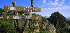 De excursión por el Parque Nacional de Garajonay de Santa Cruz de Tenerife