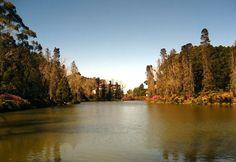 Gramado - Rio Grande do Norte