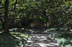 Venetian Garden