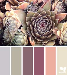 """Succulent Hues - http://design-seeds.com/index.php/home/entry/succulent-hues9"" I think this would made a nice palette for the bathroom/water closet."