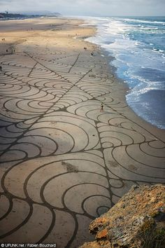 Mussels II,  Andres Amador's Large Scale Sand Art Installation near San Francisco