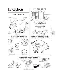 Aperçu du fichier cm148_fiches_animaux.pdf                                                                                                                                                     Plus