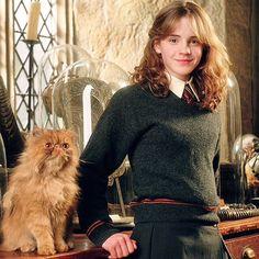 #hermione #crookshanks