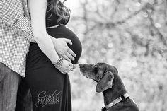 Beautiful maternity photo with the family dog Spokane photographer Crystal Madsen Photography www.CrystalMadsen.com