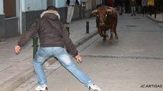 ganaderias taurinas | Publicado por Fotos Taurinas Jose Carlos Artigas en 10:59