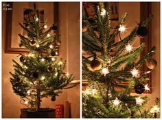 How to photography your christmas tree and get the twinkle burst of lights.