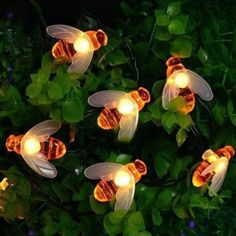 Purchase 20 LED Solar Honey Bee Fairy String Lights Outdoor Garden Wedding Party DIY from funnyshopping on OpenSky. Share and compare all Outdoor Lig Outdoor Fairy Lights, Led Fairy Lights, Solar String Lights, String Lights Outdoor, Outdoor Lighting, Outdoor Decor, Lighting Ideas, Garden Fairy Lights, Solar Flower Lights
