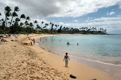 What are the Best Beaches on Maui?: Napili Bay Beach