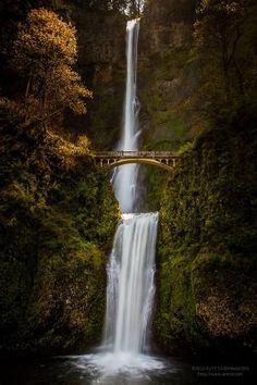Multnomah Falls in Columbia River Gorge, Oregon, USA by jenniferET