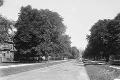 Although much wistful nostalgia is directed toward the formerly majestic and tree-lined Jarvis Street, the transformation of University Avenue over. Toronto, Tree Line, Photo Essay, Landscape Photos, Historical Photos, Cool Photos, Past, That Look