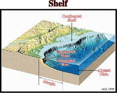 Punggung laut atau punggung bukit lautan, adalah bentukan di dasar laut yang mirip tanggul raksasa. Panjangnya bisa ribuan kilometer. Punggung laut dibatasi oleh laut dalam di kanan kirinya. Punggung laut yang berlereng curam disebut ridge, sedangkan yang berlereng landai disebut rise.