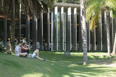 Inhotim- O paraíso das artes em Minas Gerais | Somando Destinos