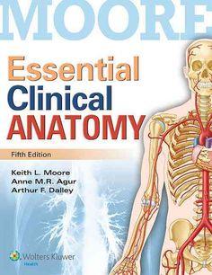 Медосмотр девушки изучаем анатомию в натуре фото 627-729
