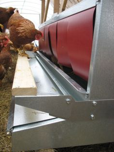 1000 Images About Roll Out Nest Boxes On Pinterest Nest