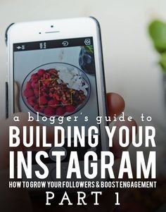 A Blogger's Guide to Building Your Instagram: Part 1 | instagram tips | social media tips