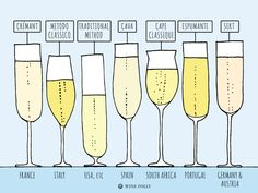 """ Most sparkling wine isn't Champagne and that's not a bad thing"". Courtesy of Wine Folly. Pinot Noir, Cristal Champagne, Sweet Champagne, Wine Infographic, Best Sparkling Wine, Wine Facts, Wine Folly, Chateauneuf Du Pape, Wine Education"