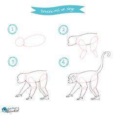 Dessine -moi : les animaux de la jungle : le singe !