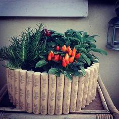 fioriera alternativa Blumentopf tappi di silicone Korken fatto a mano handmade