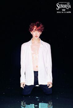 271 Best Vav Images In 2019 Kpop Boy Groups Jang Wooyoung