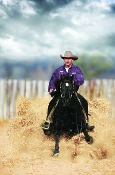 awesome reining picture