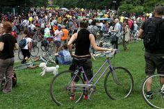 Bike Pride 2012, la grande parata di biciclette per una città a misura d'uomo