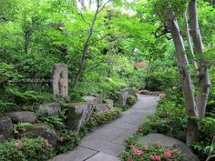 Gardens of the Nezu Museum, Tokyo, Japan Most Beautiful Gardens, World's Most Beautiful, Amazing Gardens, Gardens Of The World, Public Garden, Garden Gates, Science And Nature, Oh The Places You'll Go, Japan Travel