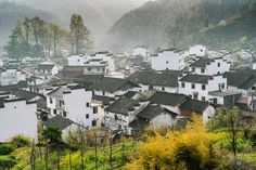 The Most Beautiful Village At China II 婺源 Wuyuan - null