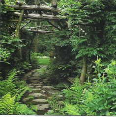twig pergola over the fern banked path = love the stone steppers. Greenery is underrated!