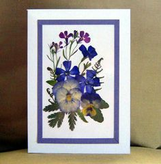 Pansy Floral Pressed Flower Greeting Card 5 x 7