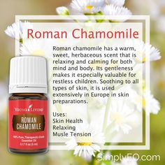 Roman Chamomile 5ml Essential Oil Young Living