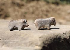 Rare pig figurines found in Bronze Age house in southern Poland Sandstone Slabs, Animal Noses, Romanesque Architecture, Archaeology News, Old Stone, Bronze Age, Vintage Toys, Lion Sculpture, Old Things
