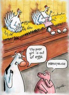 Henopause..... Haha!!