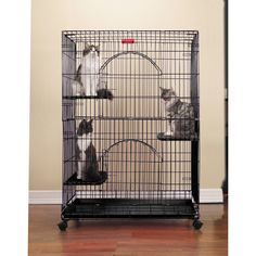 This foldable cat cage from ProSelect features a black, powder coated construction. This crate closes with a convenient slide latch. The tray is removable for easy clean up. Also includes three perche