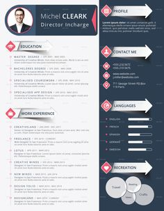 Photo All Sizes Infographic Resume Chris Rowe Infographic