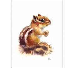 Chipmunk  Original Watercolor Painting 7x9 inches by CMwatercolors