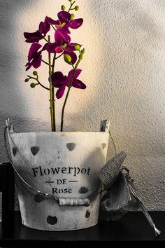 Detalle del salón, nos encantan las flores y las plantas, siempre están presentes en el hotel. Nuestro toque personal. #gijon #hotelescentrogijon