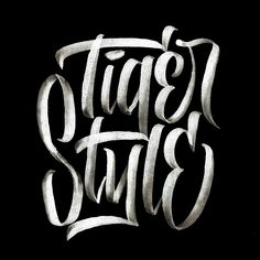Brush Script Collection No. 5 on Behance