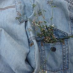 Image via We Heart It #cute #denim #paleblue #plants #tumblr #vogue