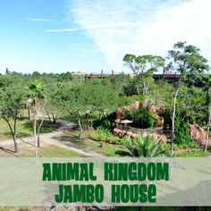 1000 images about wdw disney 39 s animal kingdom villas jambo house on pinterest disney animal. Black Bedroom Furniture Sets. Home Design Ideas