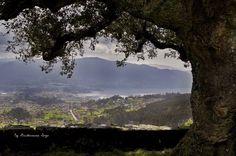 Desde el Mirador del monte da Peneda by @guillerminasogo  #RiasBaixas #Vigo #Pontevedra #Galicia #turvegal #SienteGalicia ➡ Descubre más en http://www.sientegalicia.com/