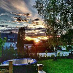 Garden sunset Taking Pictures, Northern Lights, Sunset, Garden, Nature, Travel, Voyage, Garten, Aurora