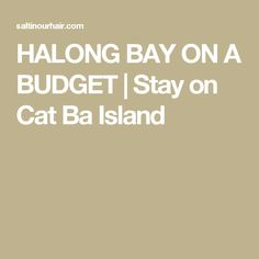 Budget tips for a cheap Halong Bay tour. Sleep on Cat Ba Island and visit the Halong bay on a budget. Included a Cat ba island guide. Vietnam Vacation, Cat Ba Island, Budgeting, Places To Go, Cats, Backpacking, Exploring, Travelling, Bucket