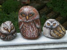 Each owl is so different in size, shape and coloring that I never get tired of painting them. All my owl rocks either stand on their own or I have a