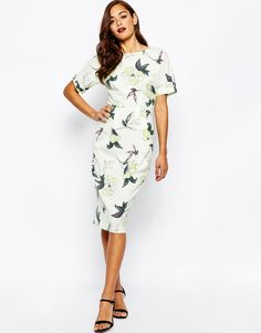 ASOS+Wiggle+Dress+in+Bird+and+Floral+Print